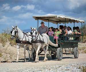 gite-spiaggia-carrozza