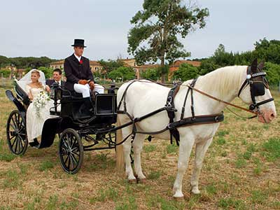matrimonio-in-carrozza